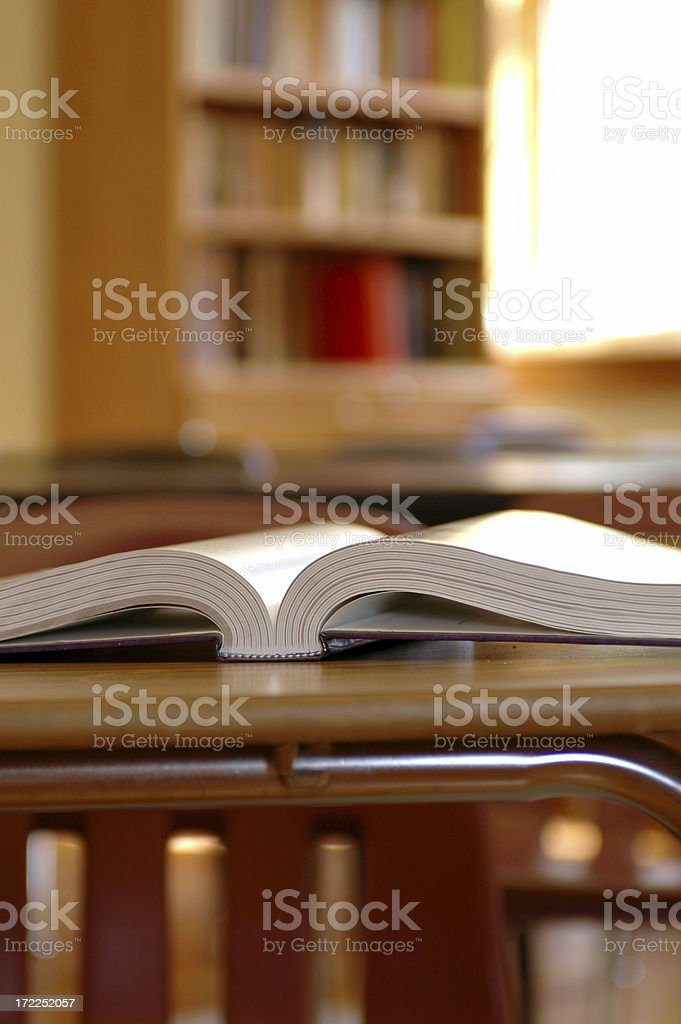 Enlightened Learning royalty-free stock photo