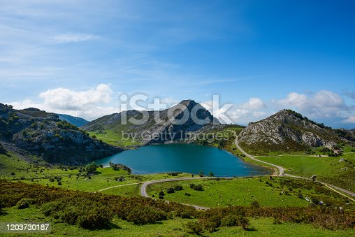 istock Enol lake in mountains with cows and sheeps on green pasture 1203730187
