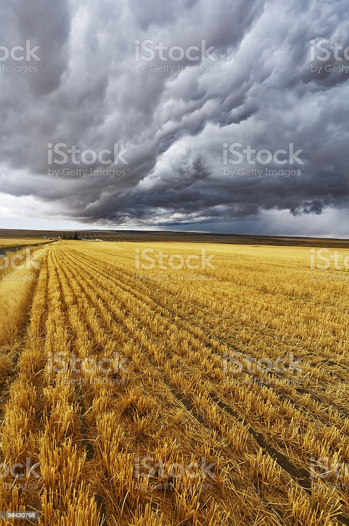 Enormous thundercloud royalty-free stock photo