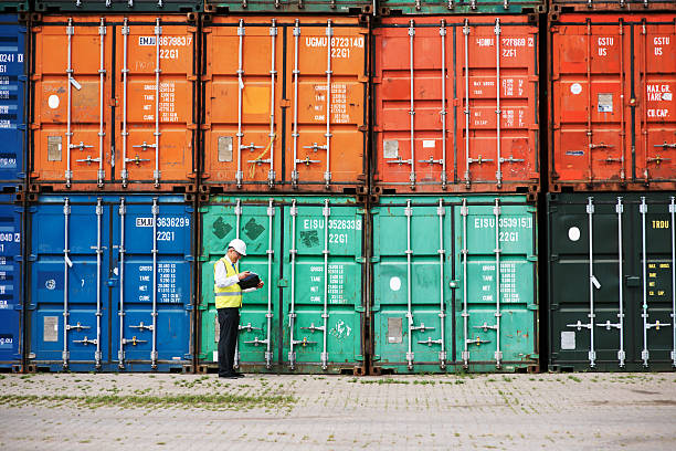 Ensuring all legal customs rules are met A customs inspector standing and reviewing a tack of containers customs stock pictures, royalty-free photos & images