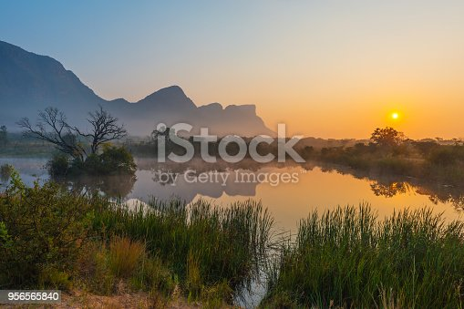 istock Entabeni Game Reserve in South Africa 956565840