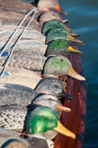 plastic avatar ducks for hunting and fishing