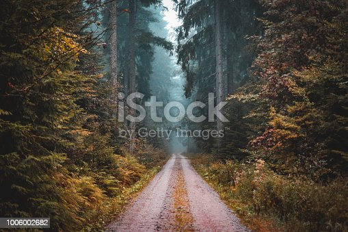 Taken in the black forest in Germany, there had been alot of rain this day, we took a turning of the main road in search of some adventure and we found it.