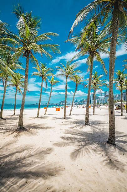 Entrance to Copacabana Beach with palms  in Rio de Janeiro stock photo