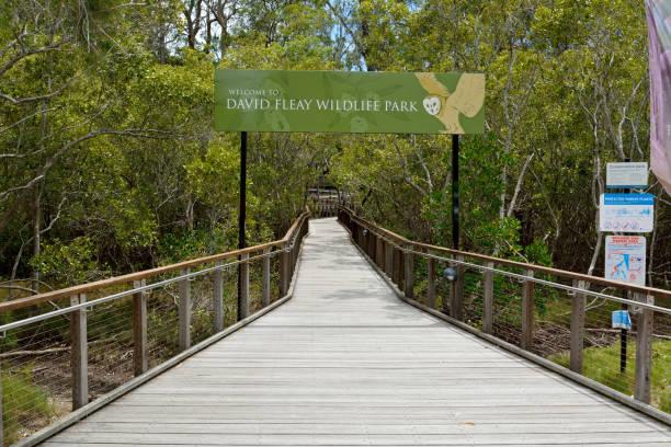 eingang zum david fleay wildlife park in queensland, australien - vorschulzoothema stock-fotos und bilder