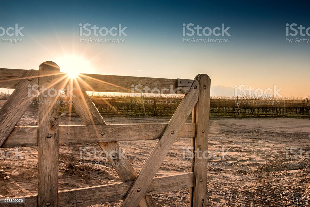 Entrance to the estate of vineyard stock photo