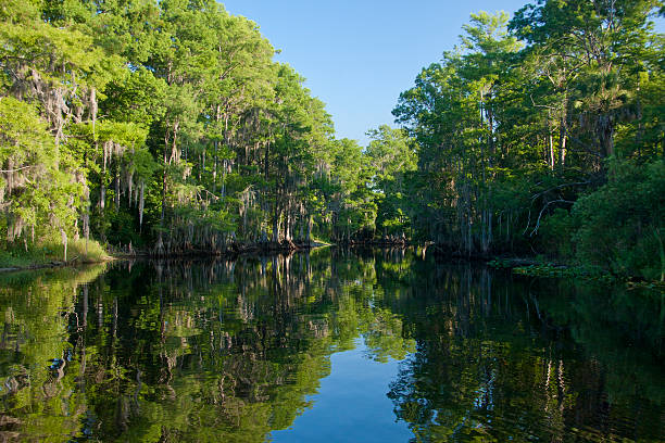 entrance to the shingle creek environmental preservation area - kissimmee stock photos and pictures