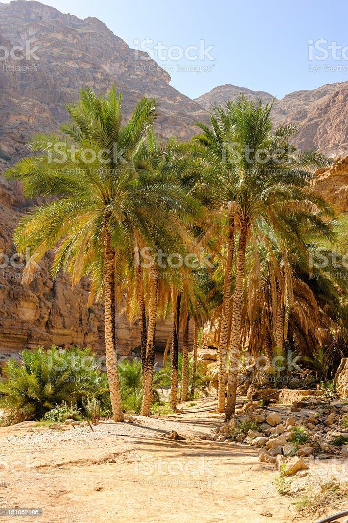 Entrance to Wadi stock photo
