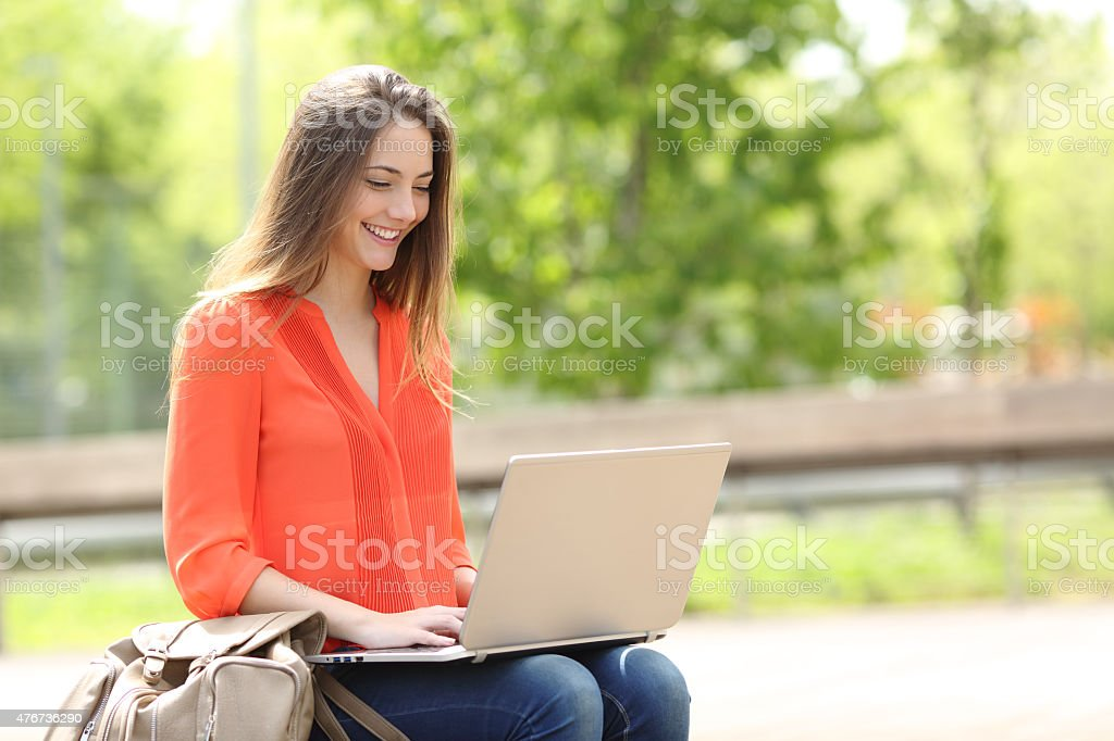 Entrepreneur working with a laptop in a park stock photo