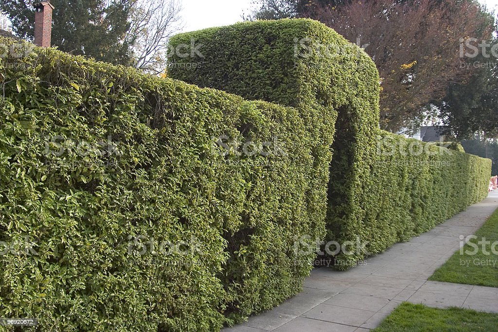 Entry Hedge royalty-free stock photo