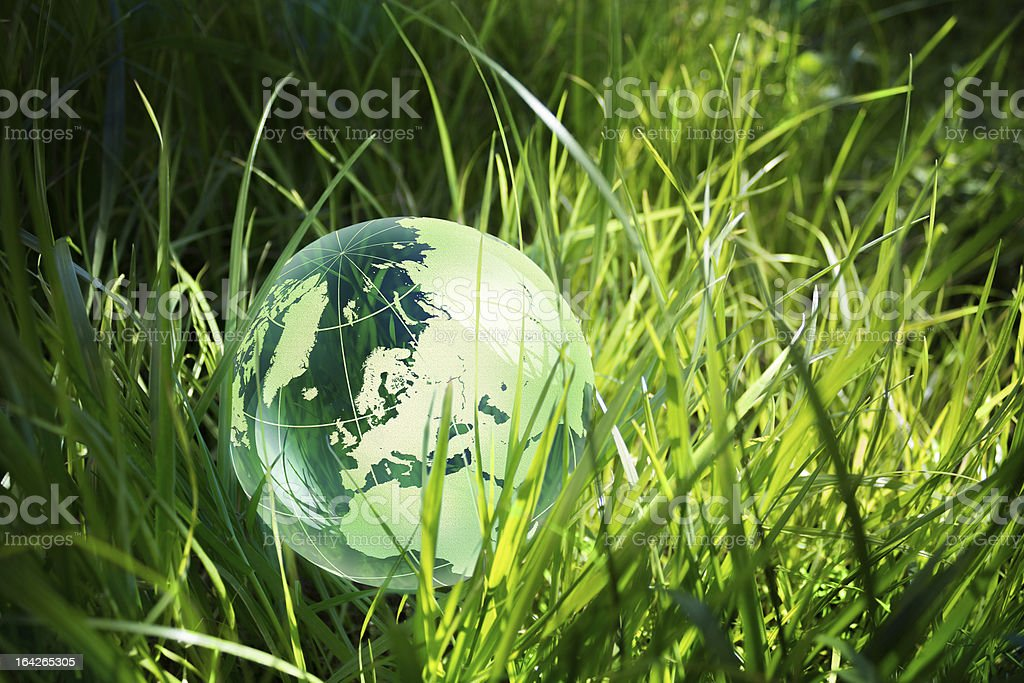 Environment concept, glass globe in the grass royalty-free stock photo