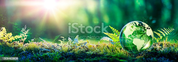 istock Environment Concept - Globe Glass In Green Forest With Sunlight 1309463809