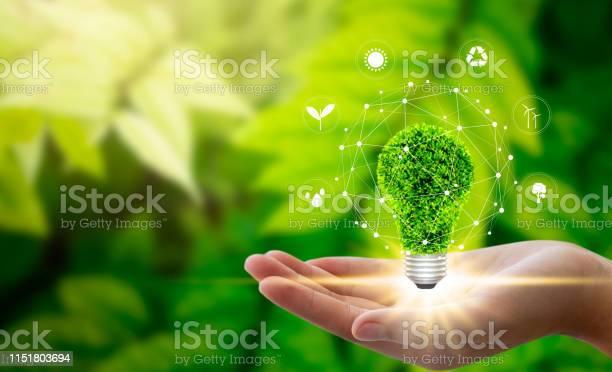 Environment concept picture id1151803694?b=1&k=6&m=1151803694&s=612x612&h=z0hxkzgnvc1evdrs1vi bnm3pdtnvbsp7f8aqgrvbn0=