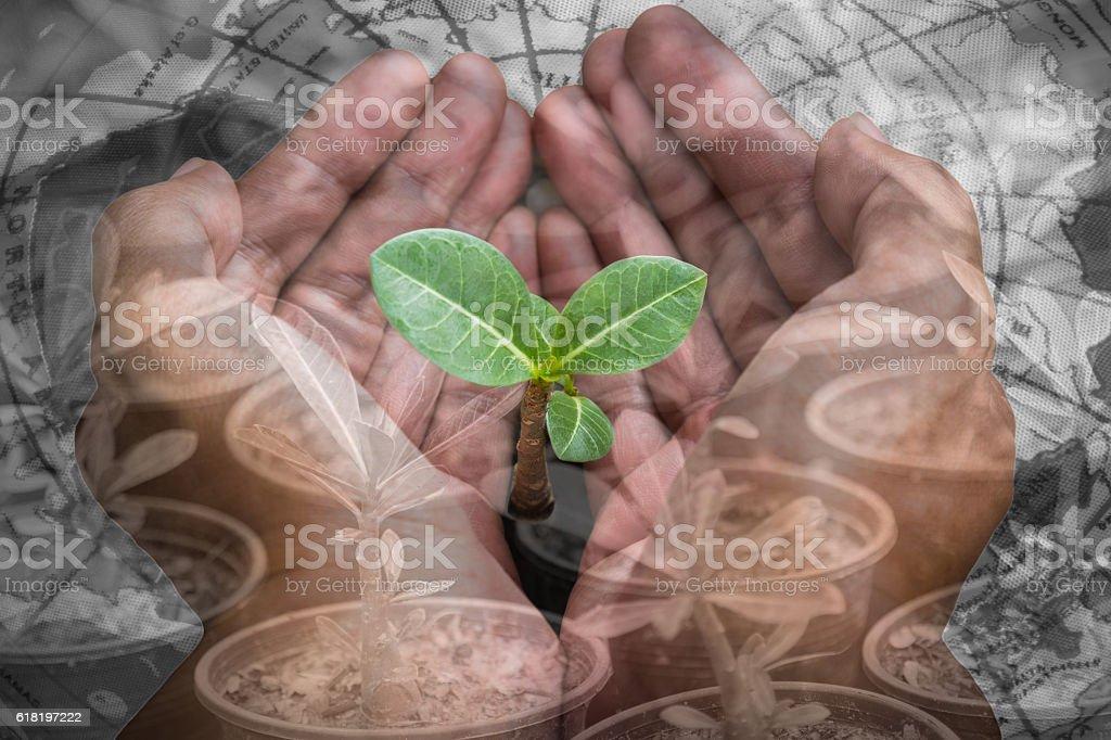 Environment concept stock photo
