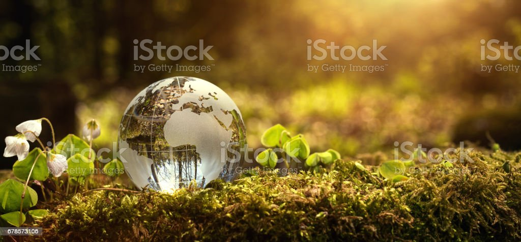 Environment conservation concept stock photo