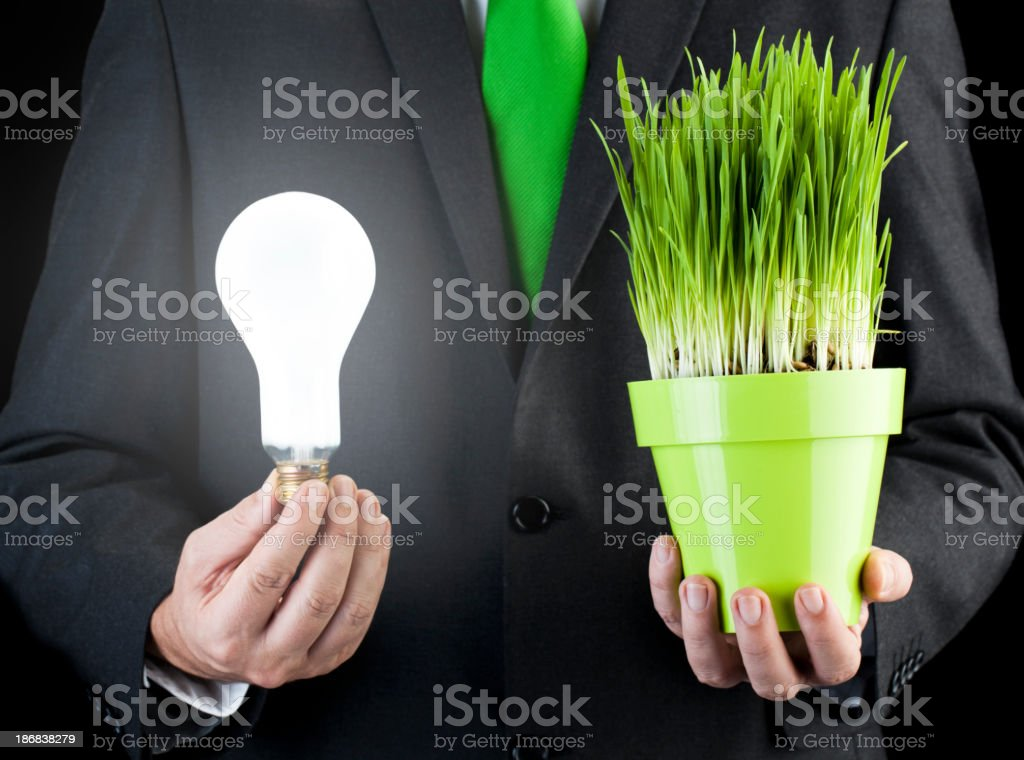 Environment conservation royalty-free stock photo