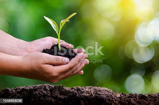 istock environment Earth Day In the hands of trees growing seedlings. Bokeh green Background Female hand holding tree on nature field grass Forest conservation concept 1048959036