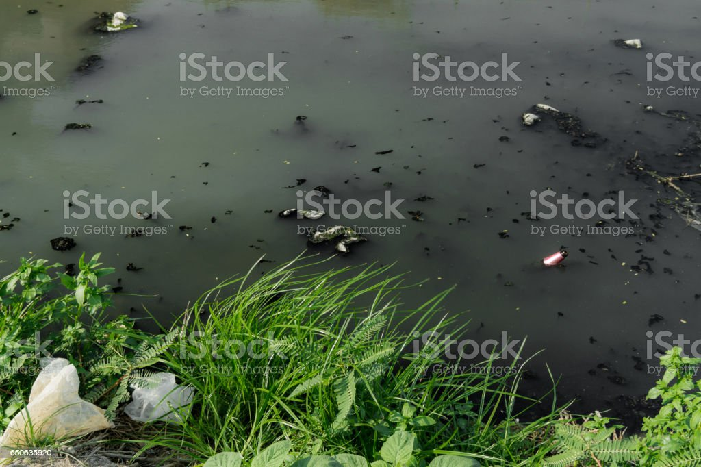 Environment problem, waste water, industrial sewage стоковое фото