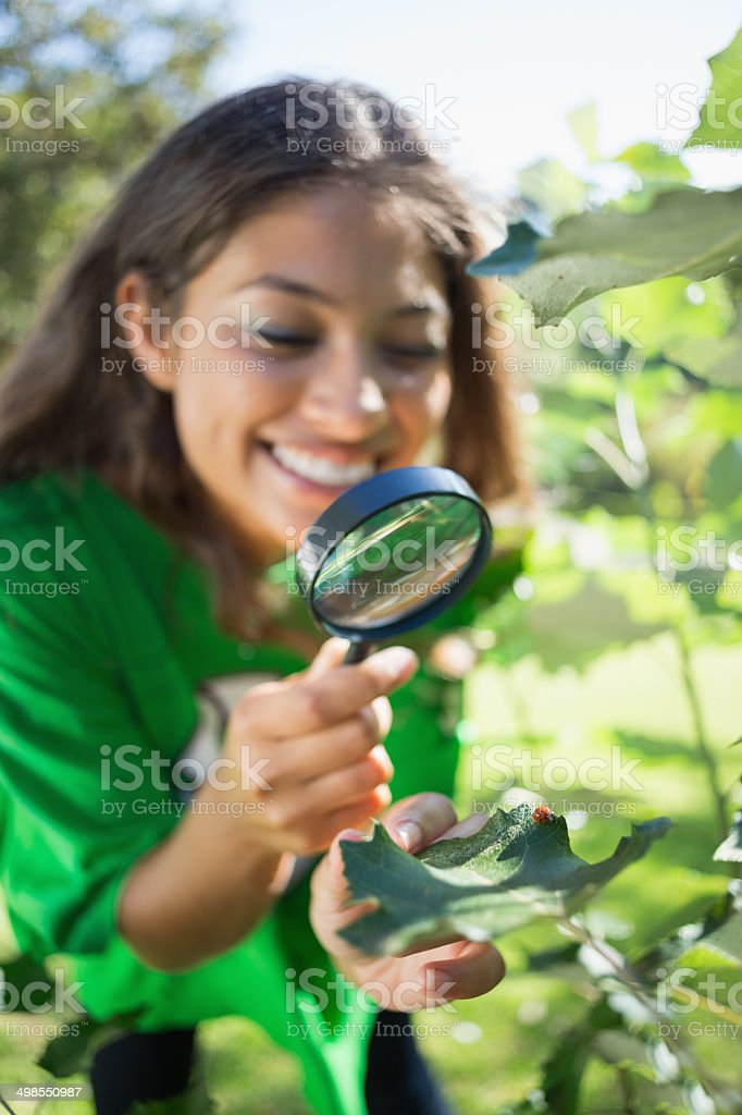 Environmental activist looking at ladybird through magnifying gl stock photo
