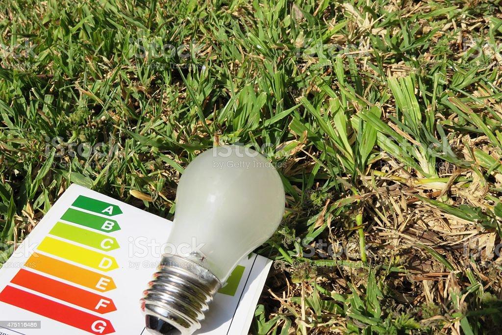 environmental awareness concept