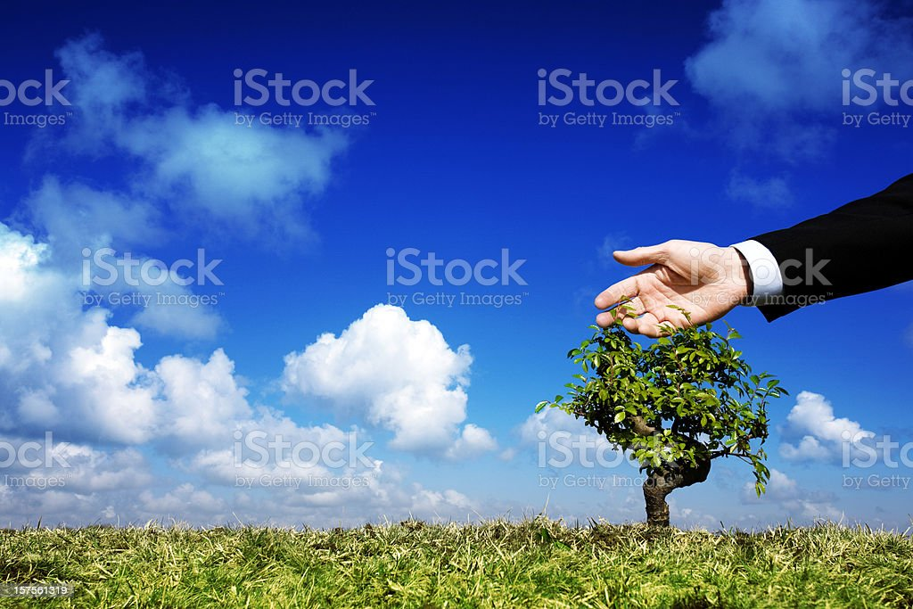 Businessman caring for a tree