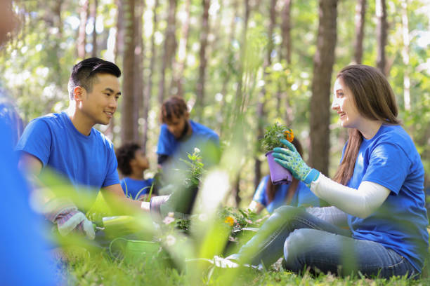 environmental beautification. volunteers plant flowers, plants at local park in spring. - earth day stock pictures, royalty-free photos & images