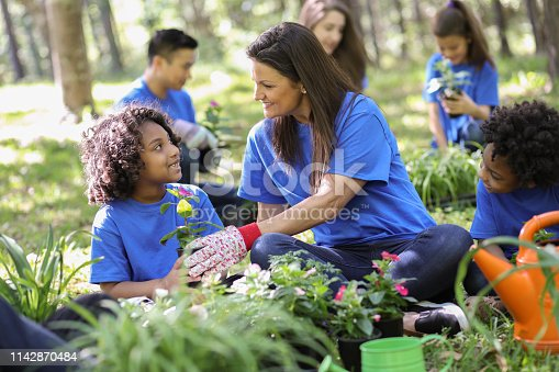 Group of environmental volunteers plant flowers, trees, and plants at local park during spring season.  Earth Day, Arbor Day themes.
