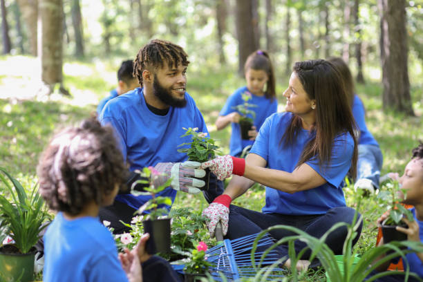 Environmental beautification. Volunteers plant flowers, plants at local park in spring. stock photo