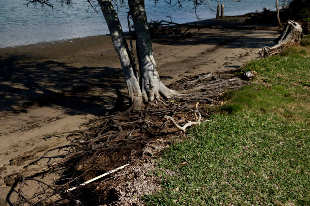 Environmental Damage of Soil Erosion Along River Bank stock photo