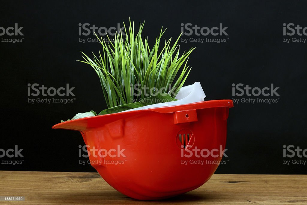 environmental friendly royalty-free stock photo