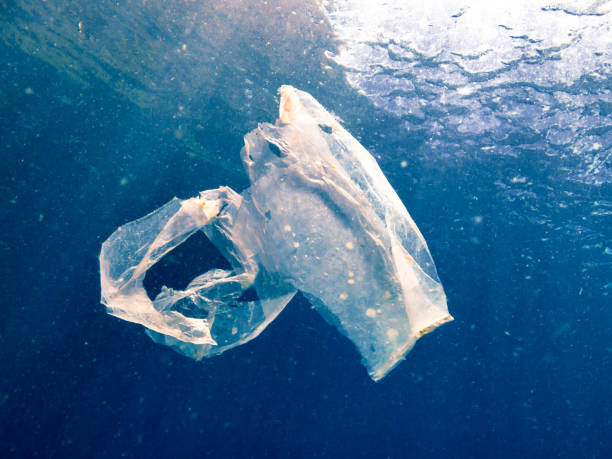 Environmental Issue Plastic in the Ocean stock photo