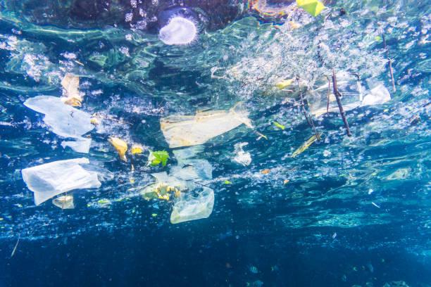 Environmental issue underwater image of plastic in the ocean picture id897472034?b=1&k=6&m=897472034&s=612x612&w=0&h=7 hgn0ql77rve30vec4azw s8dcbv4dw2db1 cmdhiy=