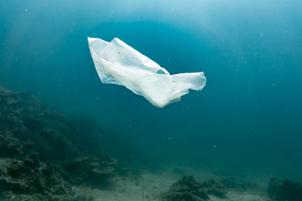 environmental issue underwater image of plastic in the ocean - ocean plastic stock pictures, royalty-free photos & images