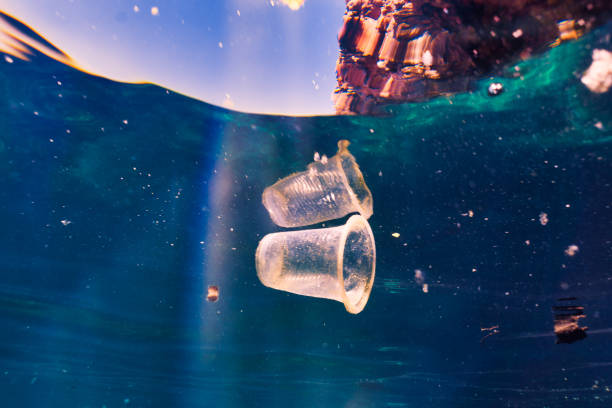 Environmental Issue underwater image of plastic pollution in the Ocean garbage patch stock photo