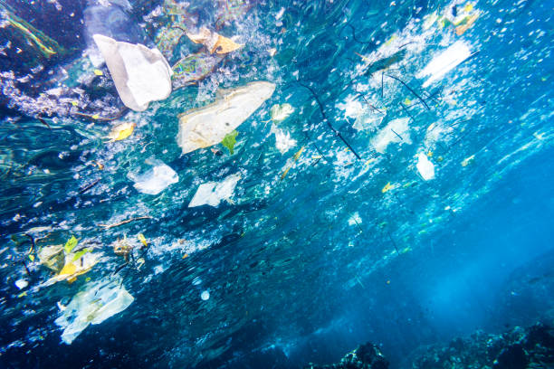 Environmental Issue: Underwater image of Plastic Pollution in the Ocean stock photo