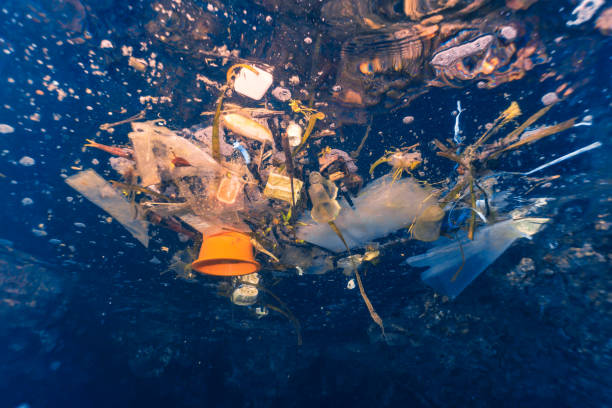 Environmental Issue Underwater single use Plastic pollution in the Ocean stock photo