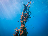 Environmental issue: Underwater tangled fishing Ghost Net pollution in Ocean