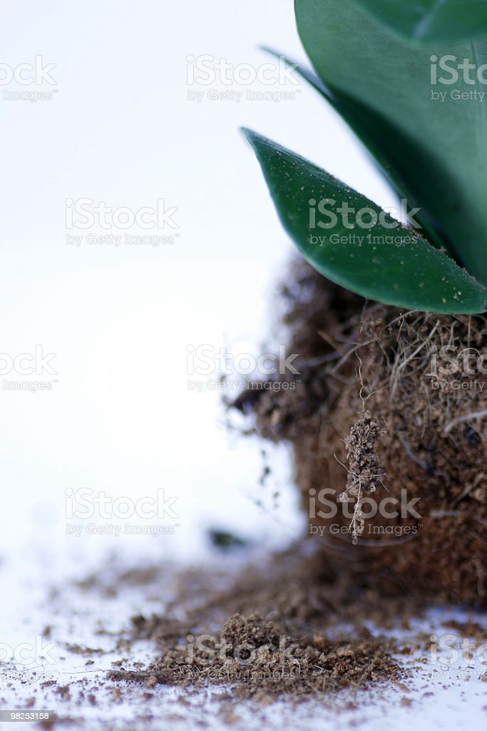 Environmental issues royalty-free stock photo