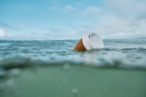 environmental issues, used discarded single use paper coffee takeout cup floating on the sea. - trash stock pictures, royalty-free photos & images