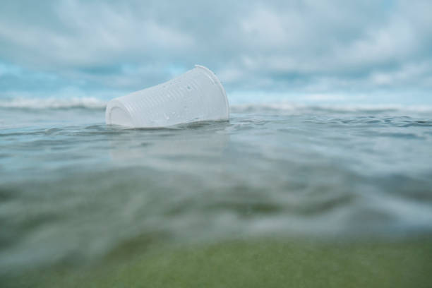 environmental issues, used discarded single use plastic cup floating in the sea. - trash stock pictures, royalty-free photos & images