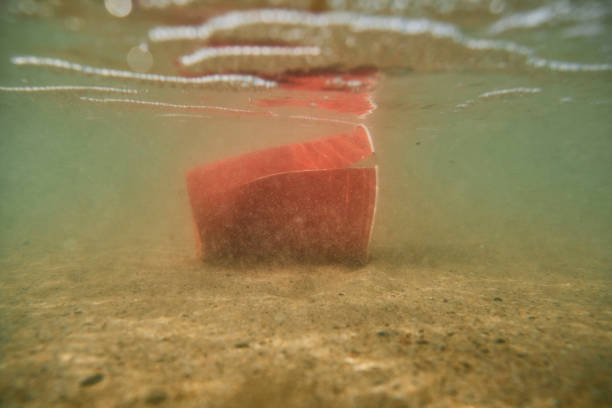 environmental issues, used discarded single use plastic cup underwater in the sea. - trash stock pictures, royalty-free photos & images