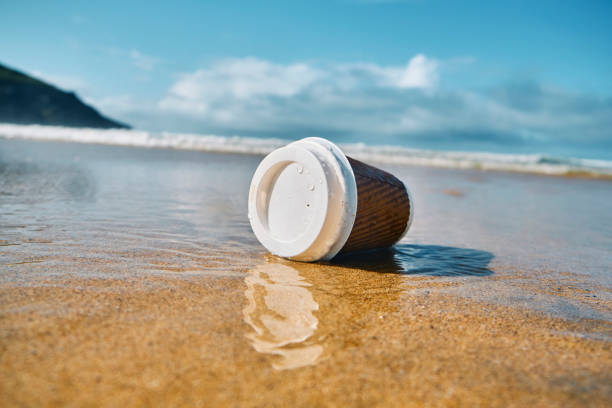 environmental issues, washed up used single use paper coffee cup at the shoreline of a beach. - trash stock pictures, royalty-free photos & images