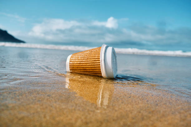 Environmental issues, Washed up used single use paper coffee cup at the shoreline of a beach. stock photo
