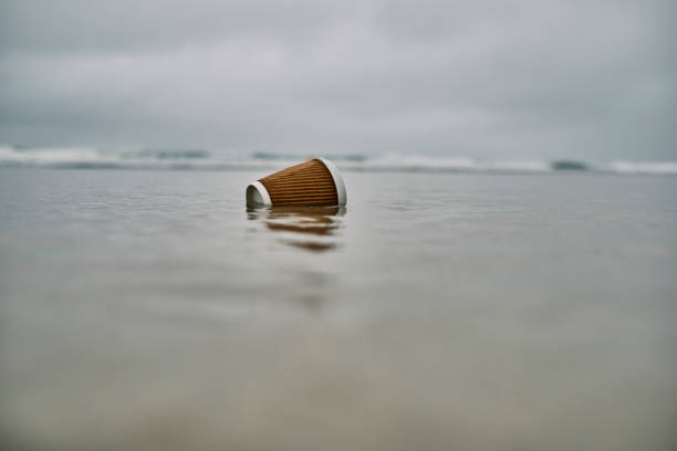 environmental issues, washed up used single use plastic cup at the shoreline of a beach. - trash stock pictures, royalty-free photos & images