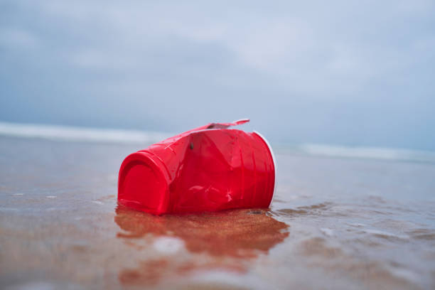 environmental issues, washed up used single use red plastic cup at the shoreline of a beach. - trash stock pictures, royalty-free photos & images