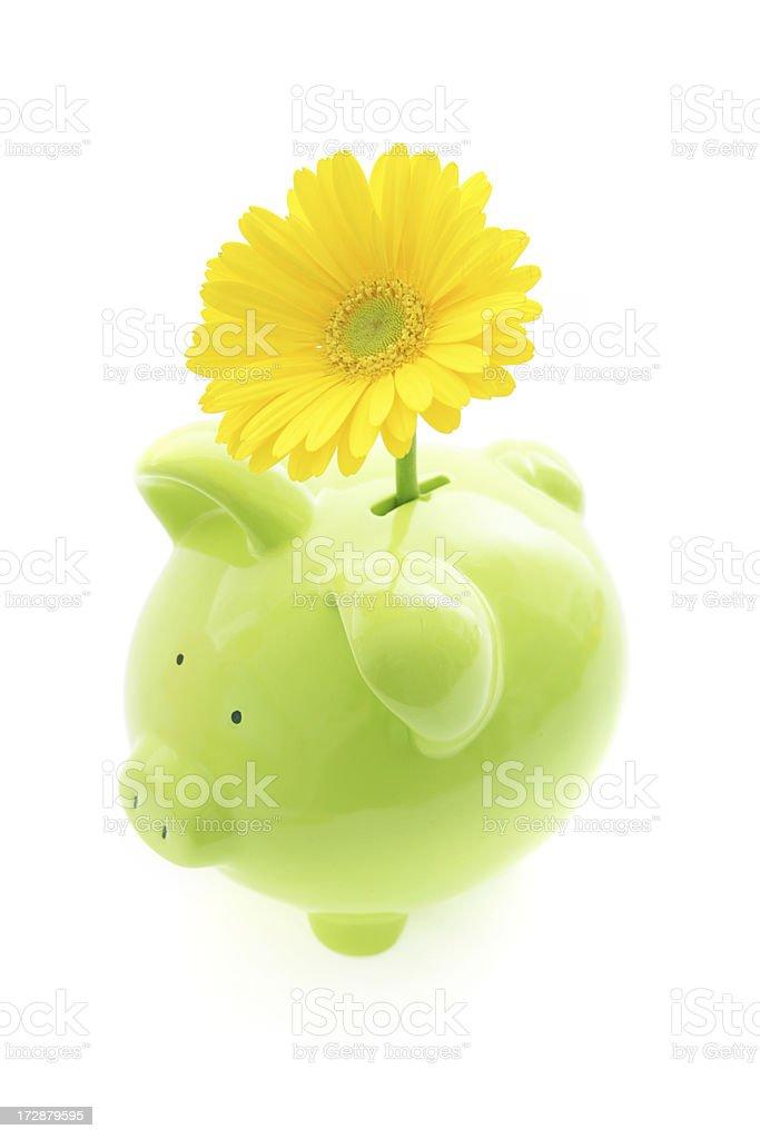 Environmental Piggybank royalty-free stock photo