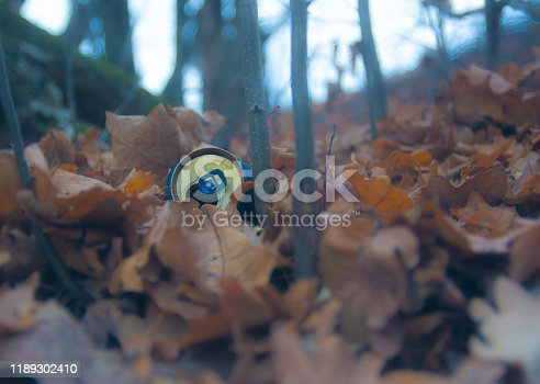 istock Environmental pollution. Aluminum can of beer lies in fallen foliage in the forest. Trash in the fore 1189302410