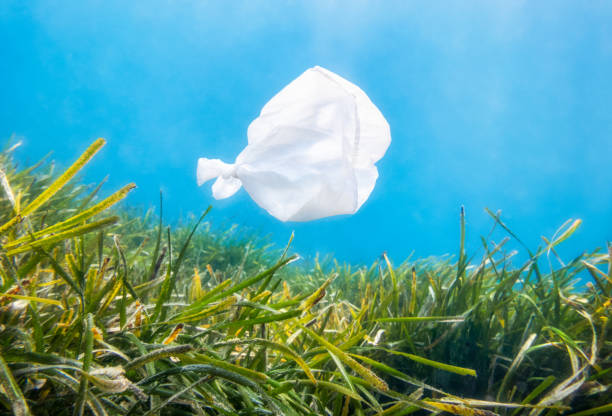 environmental protection concept. plastic bag pollution with fish shape over posidonia in the ocean - ocean plastic stock pictures, royalty-free photos & images