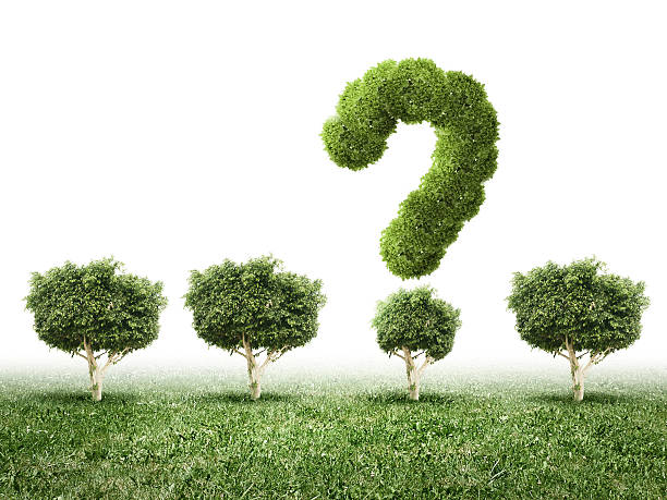 Environmental questions stock photo