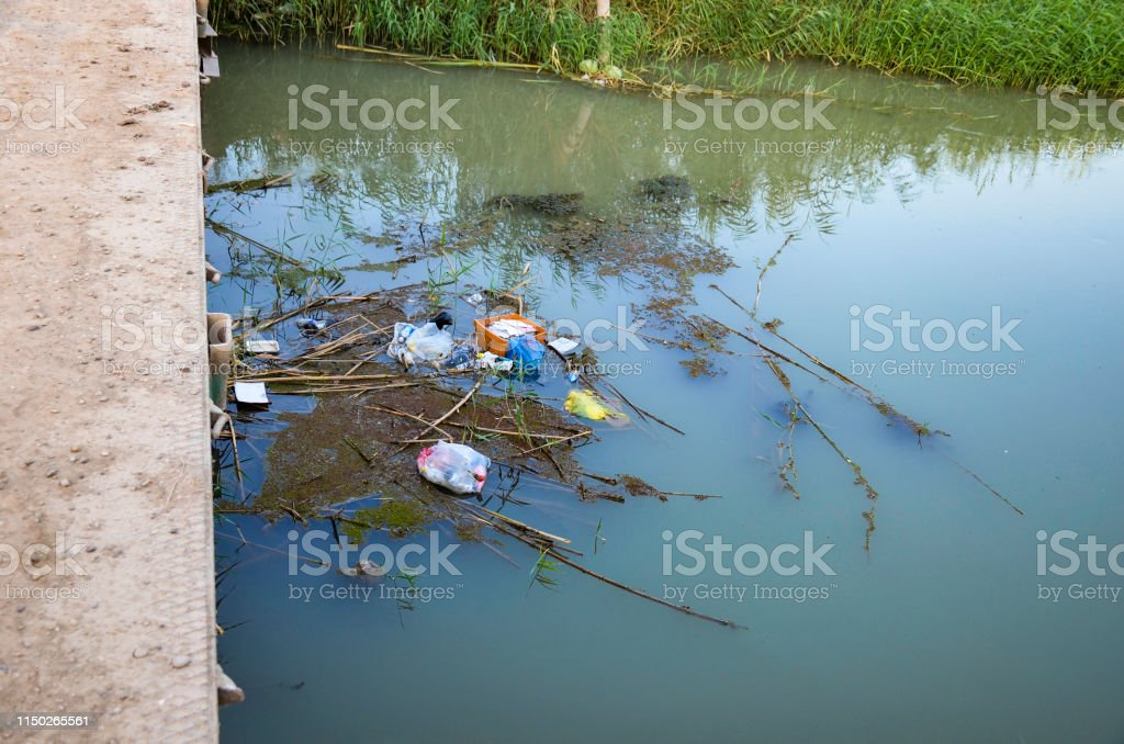 Environmental Water Pollution on river